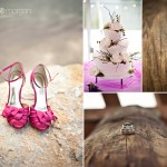 Mike and Sabrina : A Boulder Creek Ranch Wedding