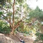 Mike and Jackie – Laguna Canyon and Laguna Coves – Laguna Beach Engagement Photographer