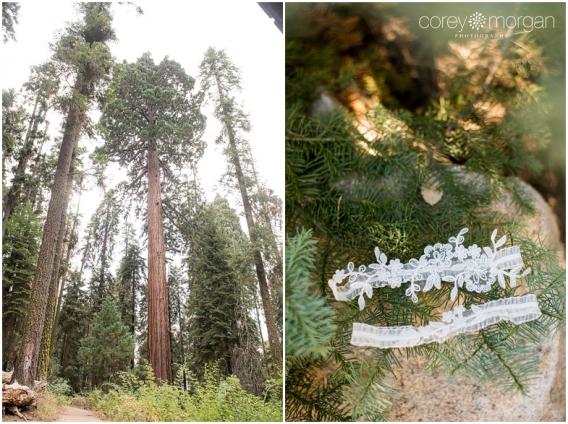 Sequoia National Park Wedding Sarah And Robert Beetle Rock